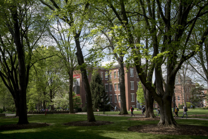 Trees on Belknap campus represent more than 130 species, including many native to the region.