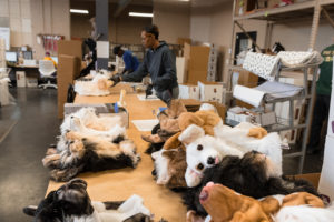 A workroom at the Cuddle Clones office.